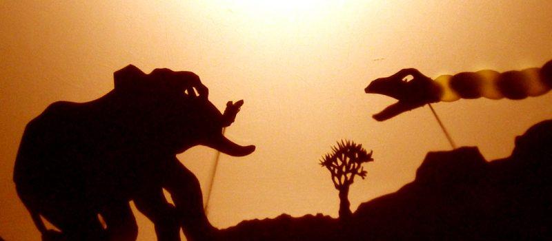 ede_elephant_serpentpython